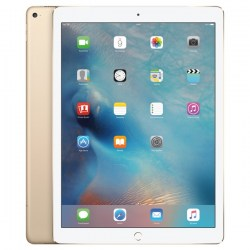 iPad Pro 128GB Wi-Fi + Cellular Gold16